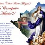 Frases para el 8 de diciembre dia de la Virgen con imagenes