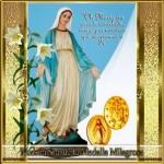 Información e imágenes del Día de Nuestra Señora de la Medalla Milagrosa