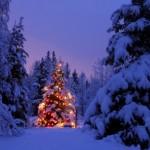 Imágenes para whatsapp de Navidad