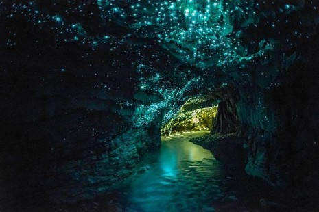 Cueva Waitomo, En Nueva Zelanda
