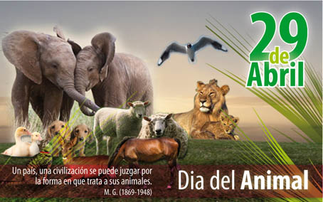 http://navegarmaradentro12.blogspot.com/2015/04/video-29-de-abril-dia-del-animal-youtube.html