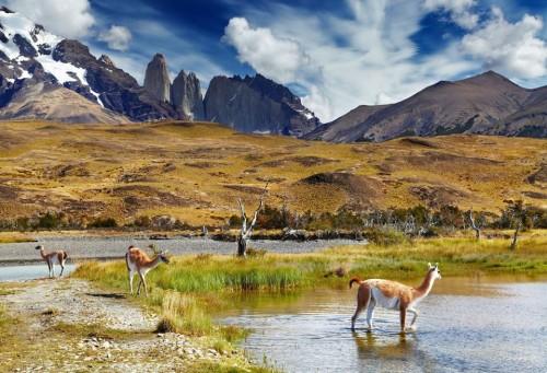 Hogar de una cuantiosa vida silvestre e increíbles paisaje