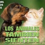 Tarjetas del Día del Animal con frases y mensajes para descargar gratis