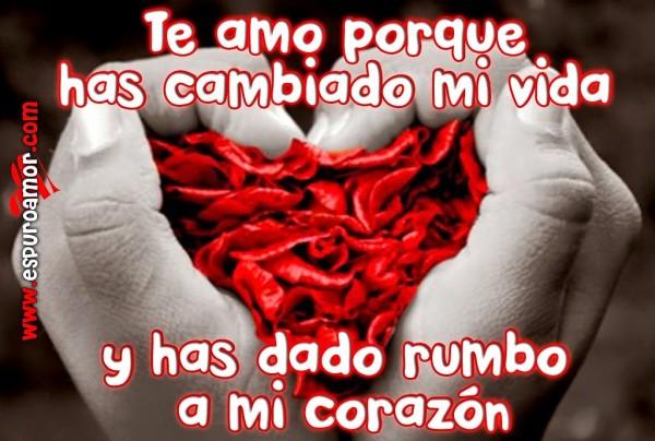 Frase-de-amor-para-dedicar-a-el-amor-de-tu-corazon-Te-amo-porque-has-cambiado-mi-vida-y-has-dado-rumbo-a-mi-corazon