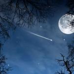 Imágenes de estrellas fugaces o Meteoros – Maravillas en el cielo