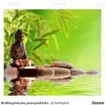 Imágenes pacíficas de meditación