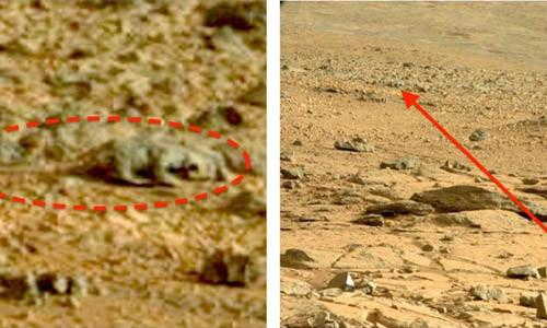 imágenes de Vida en Marte (18)