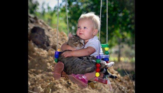 bebes y niños con gatos  (12)