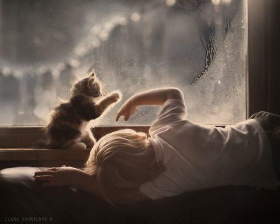 bebes y niños con gatos  (14)