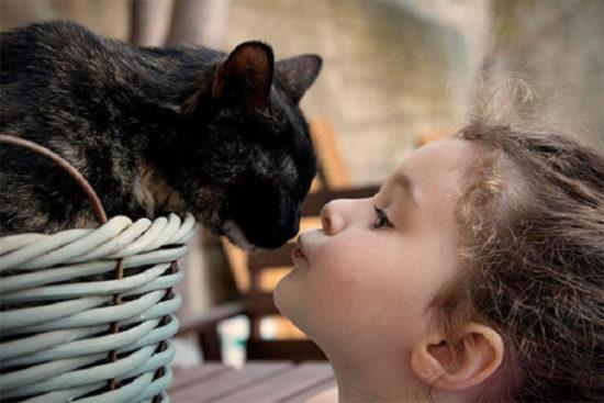 bebes y niños con gatos  (16)