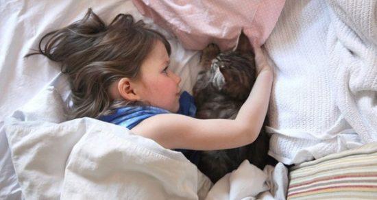 bebes y niños con gatos  (5)