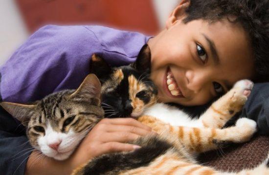 bebes y niños con gatos  (9)