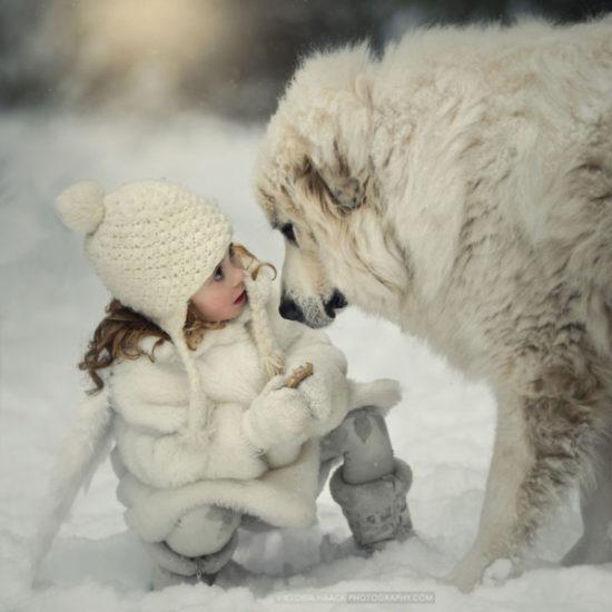 niños y bebes con perros  (14)