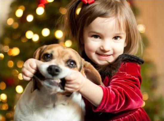 niños y bebes con perros  (24)
