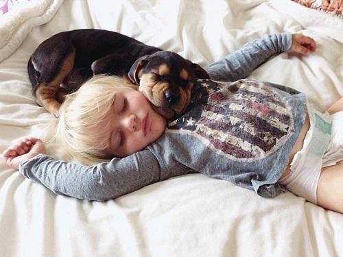 niños y bebes con perros  (3)