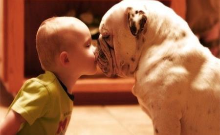 niños y bebes con perros  (9)