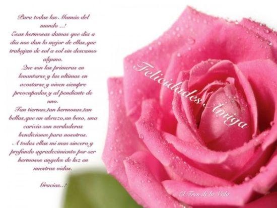 Felíz día de la Madre - frases  (8)