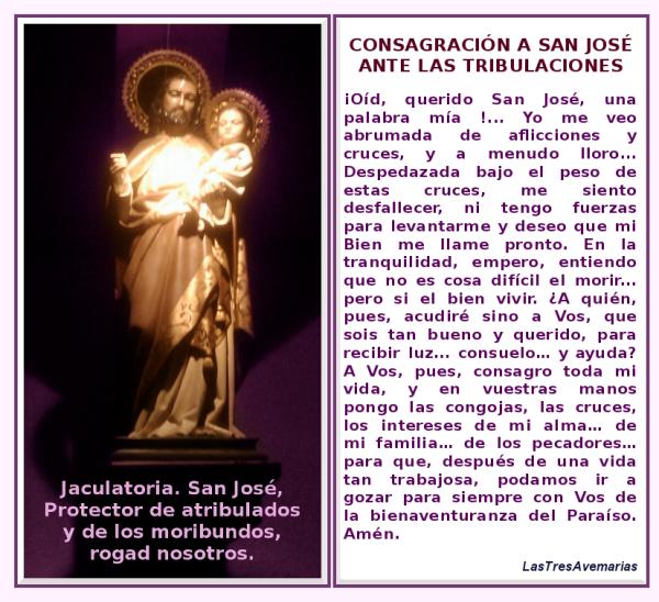 El Papa Francisco - ABC.es