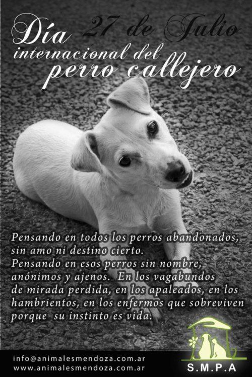 día del perro callejero  (1)