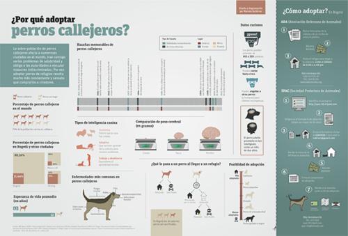 infografia día del perro abandonado (1)