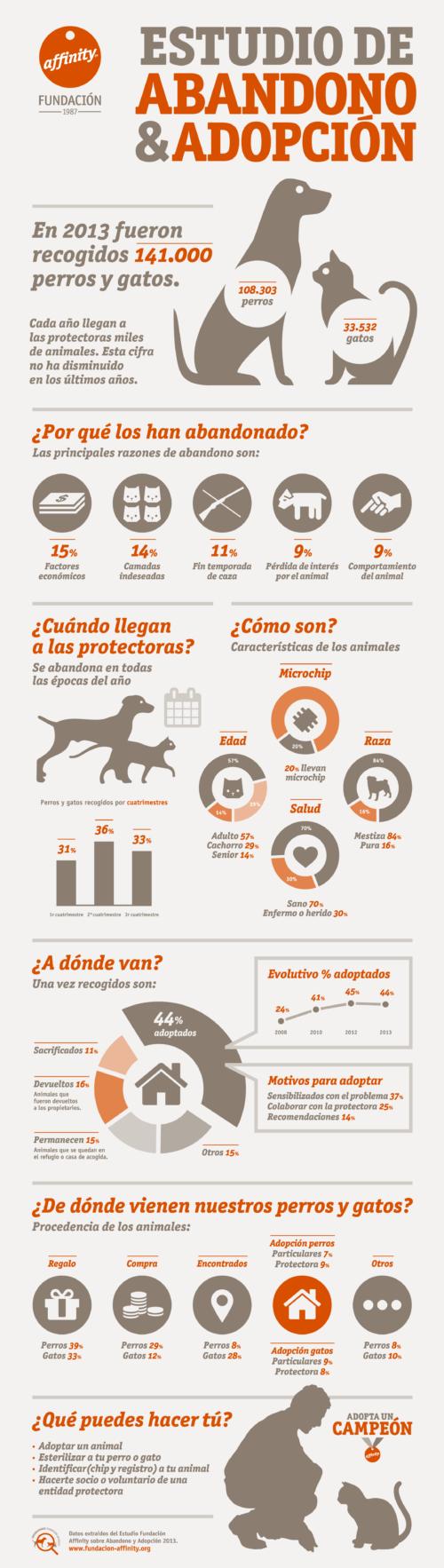 infografia día del perro abandonado (2)