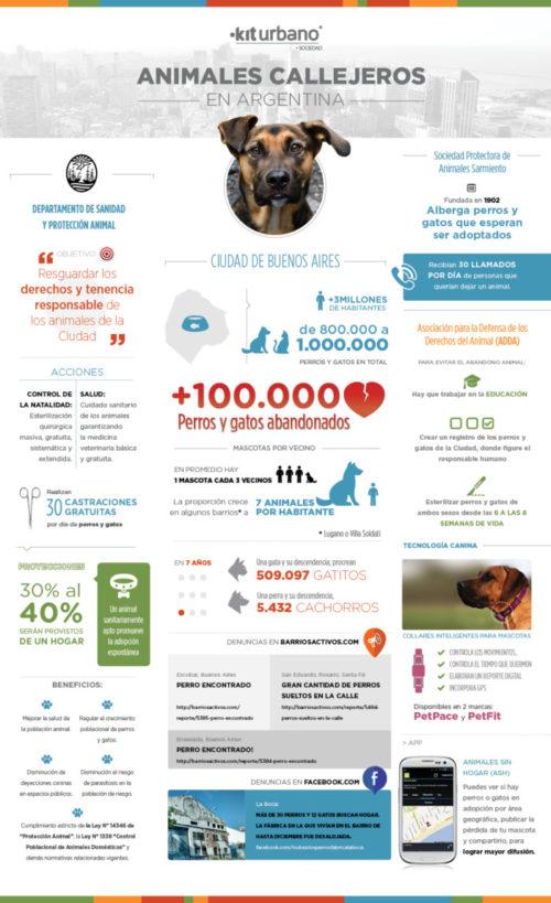 infografia día del perro abandonado (5)