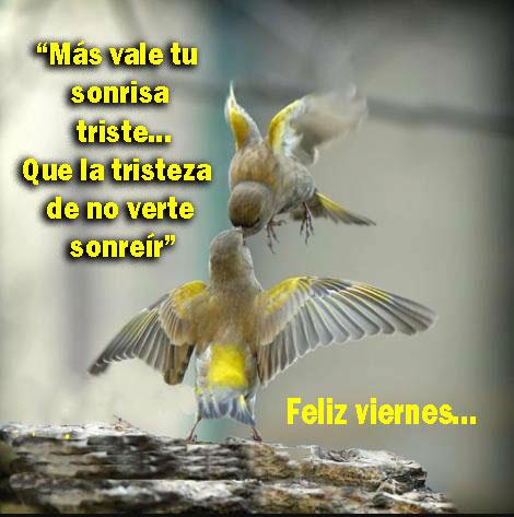 viernes (5)