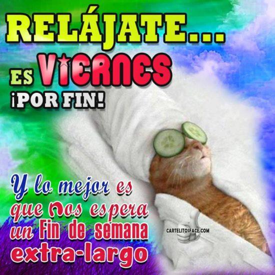 viernes (6)