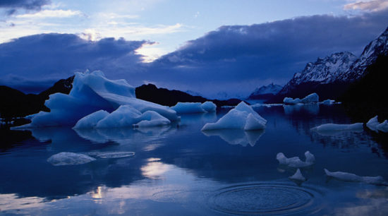 Glaciar Grey - Torres del Paine (10)