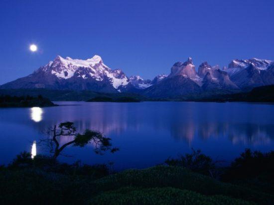 Torres del Paine paisajes, parque, flora, fauna (17)