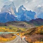 Imágenes del Parque Nacional Torres del Paine y Glaciar Grey en el sur de Chile