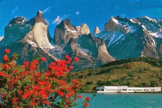 Torres del Paine paisajes, parque, flora, fauna (5)