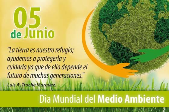 Felíz Día del Medio Ambiente: imágenes, frases y reflexiones cortas ...