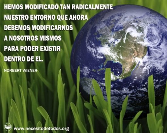 día del medio Ambiente (28)