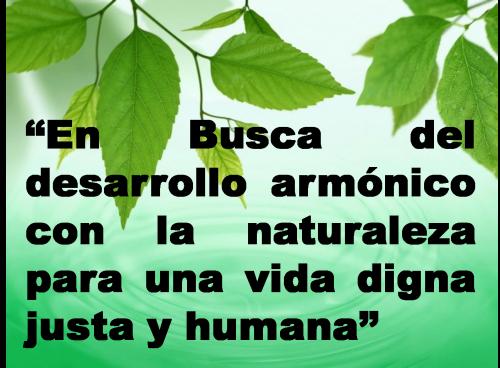 día del medio Ambiente (3)