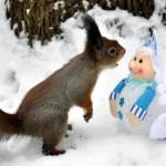65 Imágenes de Animales para el 29 de abril – Día del animal