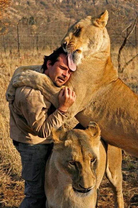 Animales - Día del Animal (28)