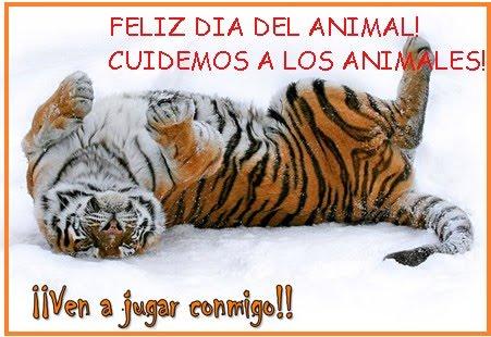 Día del Animal - mensajes (4)
