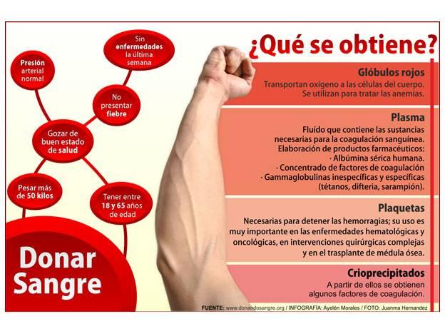 Día Mundial Del Donante De Sangre: Información, Imágenes Y