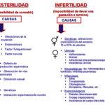 Información sobre Fertilidad en el Mes de la esterilidad e infertilidad: Diagnostico, causas, mitos y realidades