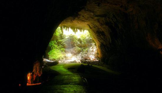 cueva  (11)