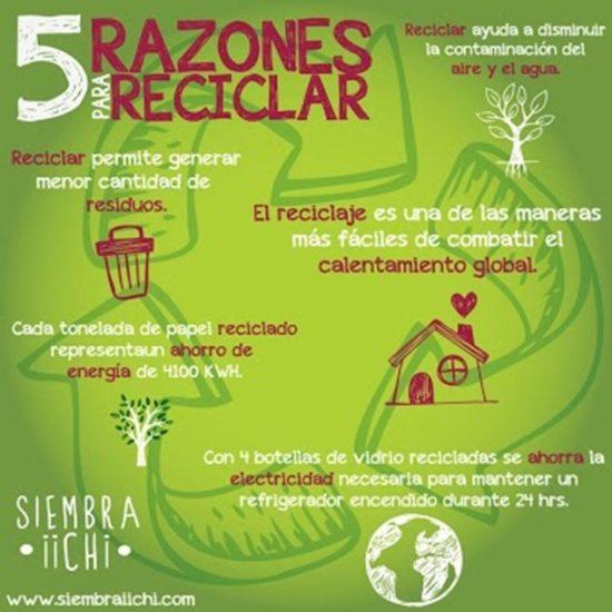 Frases e informaci n para el d a del medio ambiente en im genes informaci n im genes - Consejos de reciclaje ...