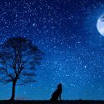 Impresionantes imágenes de la Luna y la naturaleza