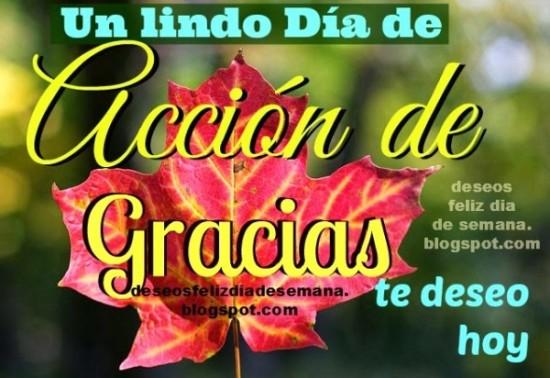 Feliz dia de acción de Gracias frases (4)