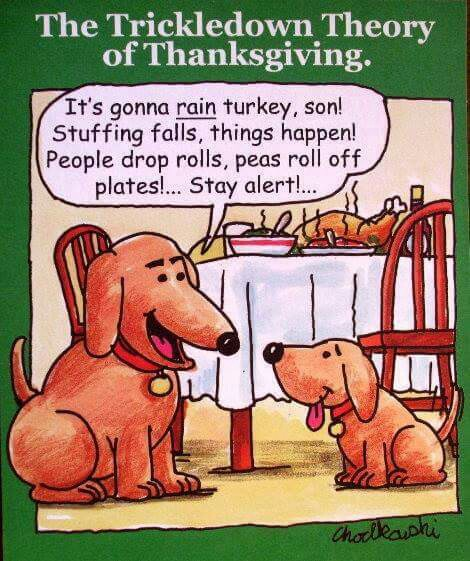 happy-thanksgiving-9