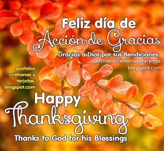Tarjetas de Feliz dia de Acción de Gracias (3)