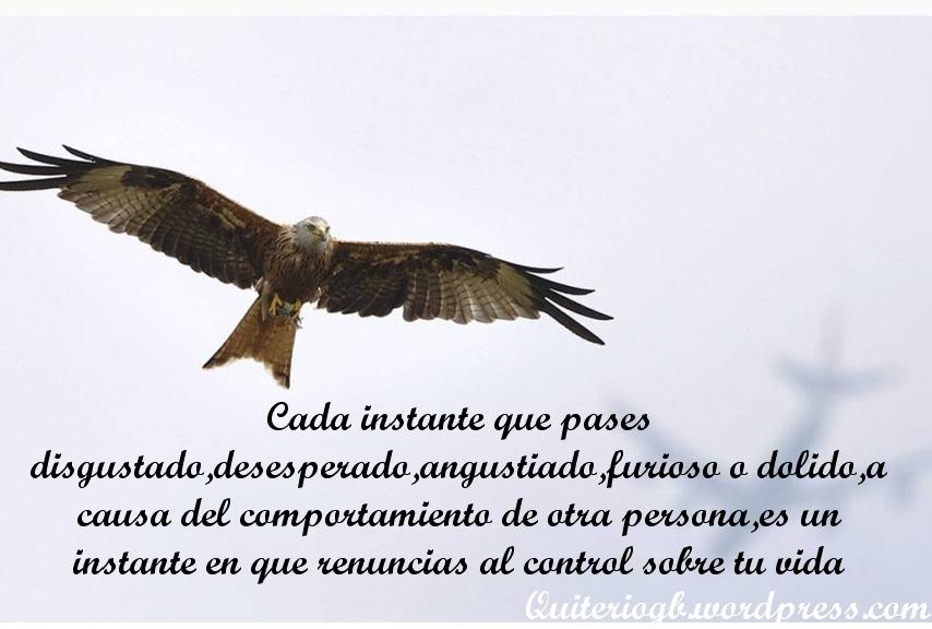 control_vida