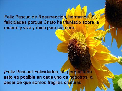 Feliz+Pascua-704123