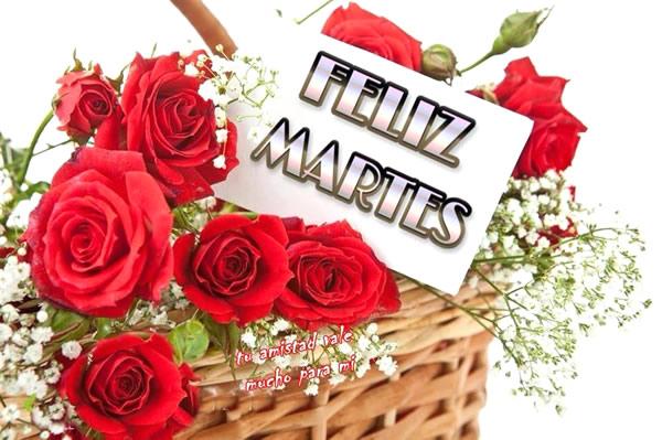 martes_040