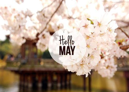 Hello-May-Cover-Photo-4